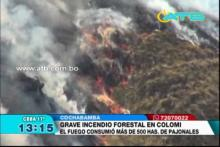 Se registró un incendio forestal en Colomi
